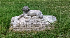 Little lamb on a child grave (elnina999) Tags: street old flowers blue light summer sky urban usa storm southwest tree green monument cemetery grave graveyard grass horizontal stone skyline night sanantonio clouds last skyscraper dead outdoors death hotel twilight downtown cityscape texas peace cross respect buried dusk spirit sacral tx headstone religion tomb tombstone saints statues calm funeral angels gravestone burial marker rest exit care monuments sculptures toweroftheamericas rivercenter oldgravestones cemeteryphotos lastrest sanfernandocemetary gravestonephotography nokialumia1020
