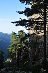 AKU_2762 (Medium) (akunamatata) Tags: grande gr20 corsica trail footpath sentier randonnee defi bavella fralimonti parcnaturelregionaldecorse toptrailintheworld