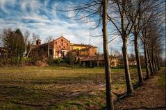 Abbazia di Morimondo (CettaCaracciolo ( nei ritagli di tempo )) Tags: alberi prati abbaziadimorimondo