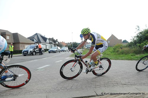 Geel Oosterlo  (230)