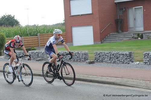 Geel Oosterlo  (263)