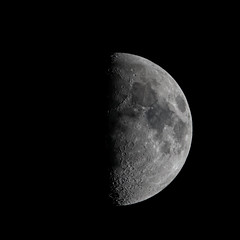 Waxing Gibbous Moon (dcstep) Tags: urban moon nature astro luna urbannature lunar waxinggibbous allrightsreserved ef500mmf4lis canon5dmkiii ef20xtciii copyright2014davidcstephens z5a2337dxosrgb