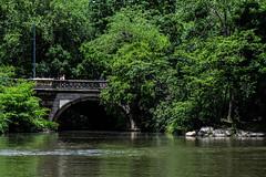 Central Park Bridge (Callum McCaffery94) Tags: newyork timesquare wallstreet grandcentral brookylnbridge