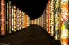 Kimono forest (Kyoto) (renan4) Tags: city trip travel light station japan night dark nikon kyoto asia graphic arashiyama japon renan d800 coridor gicquel renan4