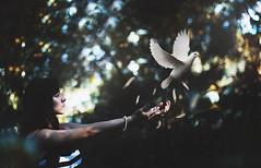 """Freedom"" 64/365 (Ronny Garcia Moron) Tags: girl canon 50mm dove fineart alyson traveller 365 conceptual 18 365days 60d 365project ronnygarcia ronnygarciaphotography"