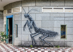 Kep - praying mantis by ROA (tim willems) Tags: graffiti cambodia kep villas sixties urbex roa