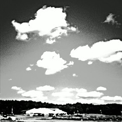 Summer breeze (forte.tyler) Tags: summer bw sun white lake black boston square nbc healthy weed 60s god squares massachusetts country jesus gray cnn 80s land 70s abc crops hiphop 50s dare rap tombrady sober app msnbc 30s cbs espn aeronautics faithful derekjeter mindful kanyewest kardashian kimkardasian espn8theocho iphoneography partysober instagram instagramapp