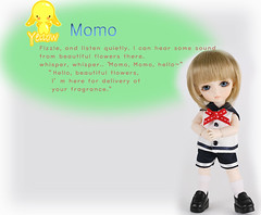 LatiDoll - Momo Original Description (Deer Thistle) Tags: momo cookie coco miel lea benny lumi lami latidoll latiyellow