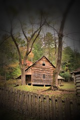 (itsbrandoyo) Tags: old family mountains mill cove pigeon great smoky forge townsend tennesee cades