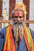 MADURAI UN SADU (pierre.arnoldi) Tags: madurai tamilnadu inde sadu gopurams
