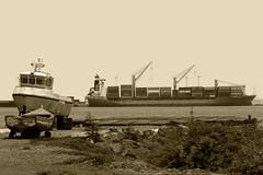 The fleet (Tude e João) Tags: praia port boat ship craft vessel cargo fleet watercraft caboverde containers capeverde cargoship ilhadesantiago santiagoisland freightership capvet iledesantiago