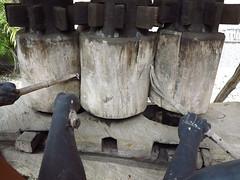 011 (alexandre.vingtier) Tags: haiti rum caphaitien nazon clairin rhumagricole distillerielarue