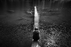 arbre (sparth) Tags: leica blackandwhite lake reflection tree monochrome blackwhite noiretblanc august symmetry reflet wa wenatchee washingtonstate arbre hiddenlake noirblanc 2014 xvario leicaxvario