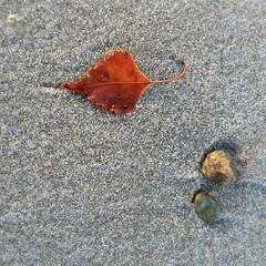 mindfulness (saudades1000) Tags: beach nature sand pebbles simplicity mindfulness beachfall