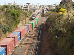 18194 DDM45 #856 + BB36-7 #732 + 7488 (de traz) com trem E641 na Linha 2 Note o pequeno Ip amarelo. Uberlndia MG (Johannes J. Smit) Tags: brasil vale trens fca efvm