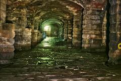 Dark Arches, River Aire, Leeds, HDR 26092014 1Ds MIR-26B, 45mm (12) (jcw1967) Tags: river secret leeds railway hidden urbanexploration historical riveraire urbex queenshotel darkarches leedsdarkarches