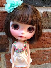Grumpy little Phoebe