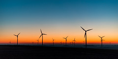 Dusk at Oermter Berg (Ir3nicus) Tags: nikond750 dslr issum nordrheinwestfalen deutschland fullframe germany niederrhein oermten oermterberg outdoor dusk dämmerung sky windturbine windenergy windkraft windrad windenergie windpower afs50mm14g 50mm sunset countryside yellow blue