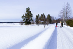 25 (VisitLakeland) Tags: winter finland snow fun haapaniemi iisalmi sledge activity talvi maisema talvimaisema countryside maaseutu tie road tree lake ice järvi sauna sunny maalaismaisema