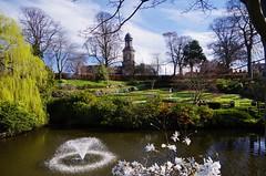 Superb setting (Sundornvic) Tags: spring flowers blossom blooms blooming park garden dingle shrewsbury shropshire quarry green light sun shine water trees plants nature