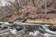 Whitewater State Park - Whitewater River (Tony Webster) Tags: middleforkwhitewaterriver minnesota whitewaterriver whitewaterstatepark leaves longexposure river spring stream saintcharles unitedstates us