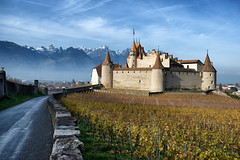 Aigle (Pat Charles) Tags: switzerland suisse schweiz vaud aigle montreux wine vineyard grape grapes grapevines winemaker farm chateau castle alps alpes swiss outdoor outside mountains snow winter cold morning early lane nikon 1001nights 1001nightsmagiccity greatphotographers