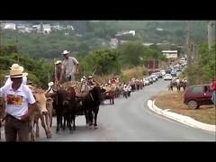 córrego fundo mg, desfile carro de bois (portalminas) Tags: córrego fundo mg desfile carro de bois
