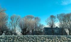 It's cold in Warmenhuizen. (Alex-de-Haas) Tags: 50mm d5 dutch hdr january nederland nederlands netherlands nikkor nikkor50mm nikon nikond5 noordholland thenetherlands warmenhuizen westfrieseomringdijk bevroren cityofwarmenhuizen cold daglicht daylight frozen gevroren handheld highdynamicrange icy januari koud landscape landschap licht light overdag polder polderlandschap sun sunray sunrays sunbeams sunny sunrise winter zon zonnestralen zonnig zonsopgang