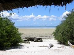 Zanzibar Hut (Francesco Pesciarelli) Tags: zanzibar hut islands clouds ocean africa flickr pesha wild nature colors life big downloadable mentionmyname varied collection thoughtful colours