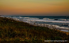 Natural Opulence (T i s d a l e) Tags: tisdale naturalopulence coast atlanticocean outerbanks southernshores summer september 2017 easternnc