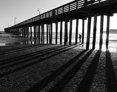 Cayucos Pier II (Joe Josephs: 3,166,284 views - thank you) Tags: beach beaches california californiacoast coastal coastline landscape landscapephotography pacificcoasthighway pacificocean shoreline travel travelphotography joejosephs outdoorphotography people photojournalism ©joejosephs2017 blackandwhitephotography blackandwhite pier water shadows cayucos cayucoscalifornia