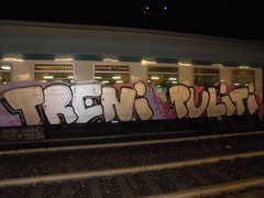 operazione treni puliti liguria!! (en-ri) Tags: train torino graffiti writing bianco lilla