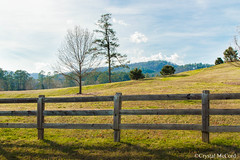 A Walk in the Country (Just a Girl and a Camera) Tags: pasture country rurallife spring woodfence romega romegeorgia nikond3200 prettyphotos goodphotos berrycollege berrycollegeromegeorgia