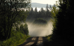 Into the unknown... (Hedstrom - Sweden) Tags: road morning mist sunrise dirt