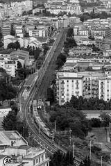(Fabio Scarano) Tags: road street bw white black train strada rail e and fotografia bianco treno nero photografy rotaia