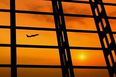 Sunset Journey (tropicalisland045) Tags: sunset sky airplane evening airport shanghai airbus      settingsun
