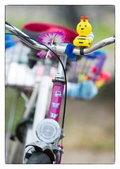 das Rad einer Dame, vermutlich (georgsfoto) Tags: color colour bicycle warnemnde farbe farbig fahrrad rostock bunt heimat damenrad aisnikkor40035ifed