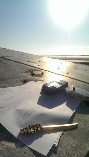 Notatki redaktora na dachu mysiej wieży