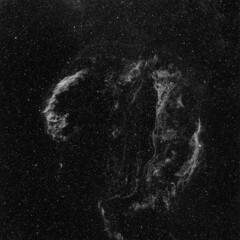 Veil-Ha (Astro Photographer) Tags: veil nebula pickering ngc6960 ngc6992 ngc6974 ngc6995 ic1340 ngc6979 astrometrydotnet:status=solved astrometrydotnet:version=14400