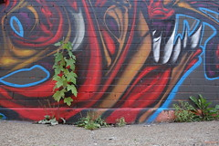 what sprouts (KevinIrvineChi) Tags: street blue red urban chicago streets green wall graffiti weeds mural paint painted murals sidewalk spraypaint walls bridgeport chicagoist weedy morganstreet west32ndplace