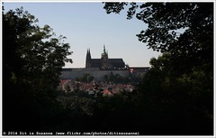 View from Petn Hill (Dit is Suzanne) Tags: church view prague praha praskhrad czechrepublic uitzicht kerk praag sintvituskathedraal stvituscathedral hradany praguecastle  petn malstrana tsjechi  views200 praagseburcht katedrlasvathovta  img9161  ditissuzanne canoneos40d  approximategeotag    katedrlasvathovtavclavaavojtcha  geotagbijbenadering sigma18250mm13563hsm 09062014