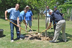 Monte with Ilderton Lions Club president Bob Mooder and charter member Skip Charlton planting a memorial tree