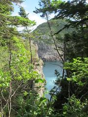 Crevasse above Quidi Vidi harbor, Newfoundland (Paul McClure DC) Tags: canada newfoundland scenery stjohns quidividi july2014