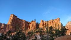 I Liked This One (NYHikerJohn) Tags: utah loop july trail fairyland 2014 brycecanyonnationalpark fairylandlooptrail johnridge nyhikerjohn americanhikingadventurescom