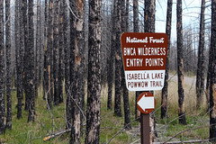 Isabella Lake-Pow Wow Trail trailhead in burned forest