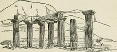 Anglų lietuvių žodynas. Žodis roman coriander reiškia romos kalendros lietuviškai.