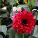 Keramik-Fleury Garten 3007054