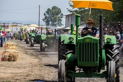The John Deere line up at Oregon Steam Up (Edward Mitchell) Tags: man oregon beard antique engines tractors deere johndeere oldguy powerland steamup antiquepowerland oregonsteamup