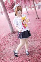 Sakura (Hexafox_JHP) Tags: photography cosplay card sakura captor jhp