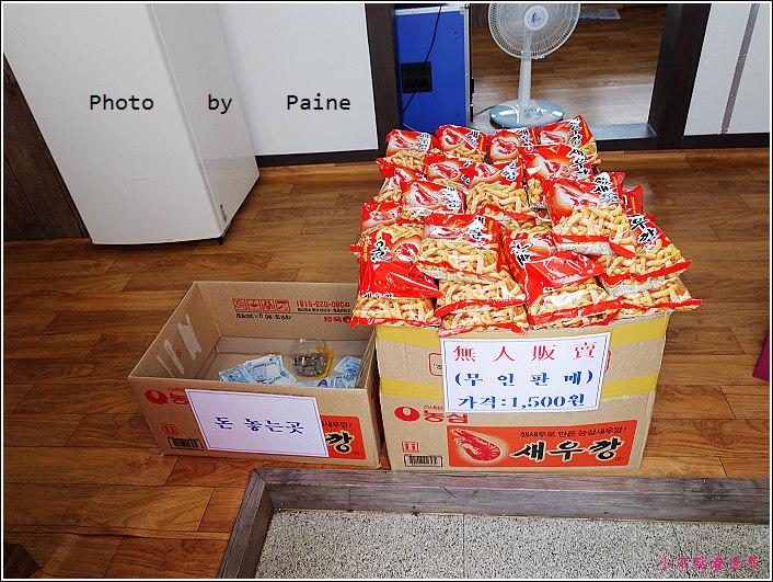 濟州島 牛島一日遊 (25).JPG
